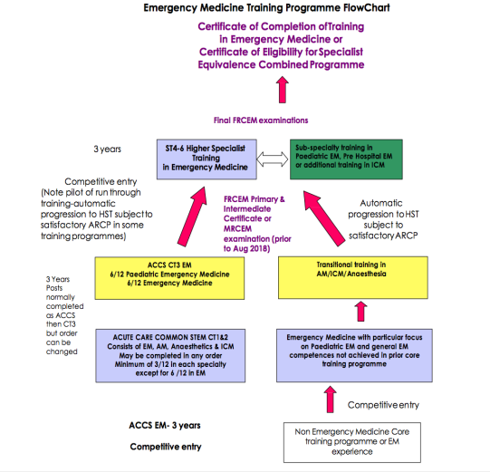 Emergency Medicine | SJDA-UK (Sudanese Junior Doctors